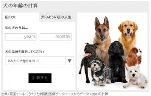 dogcal1-1
