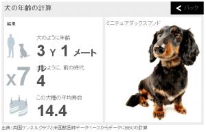 dogcal2-1
