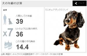 dogcal2