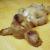 犬が寝るときの格好はなんか意味があるの?
