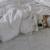 犬の平均体温は何度?体温の測り方は?発熱は何度から?