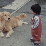 犬のしつけで「吠えるのをやめさせる首輪」があるってホント?効果はある?