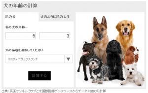 dogcal1-2