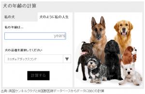 dogcal2-2