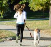 愛犬にあげたいサプリメントは?関節、心臓などに効くサプリ!